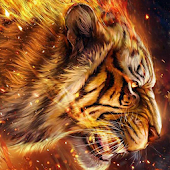 Flaming Fire Vivid Tiger Theme Android APK Download Free By Fantastic Design