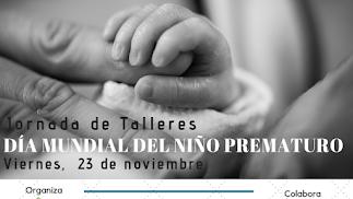 Cartel Jornada de Talleres para Bebés Prematuros en InterActúa, Atención Temprana.