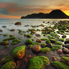 :: senjaku padamu 1# :: by Eddy Due Woi - Landscapes Beaches ( flores, nature, sunrise, travel, landscape )