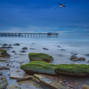 20130202 - Scripps Pier (Far).jpg