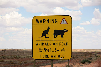 Photo: Year 2 Day 220 -  Yes, Please Watch Out for Them