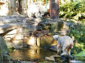 Photo: Gianna will wissen, was Knut so macht ;-)
