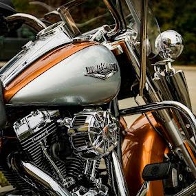 by Anthony Balzarini - Transportation Motorcycles (  )