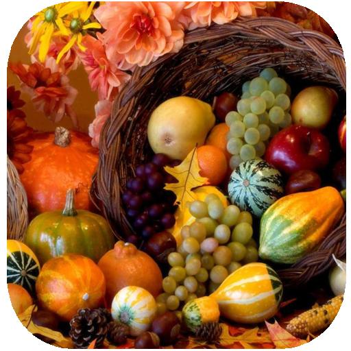 Easy Thanksgiving Decorating 遊戲 App LOGO-硬是要APP