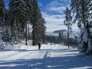 Photo: Nahe dem Bretterschachten ist die bestgespurte Loipe im Böhmerwald, aber auch die meistbesuchte