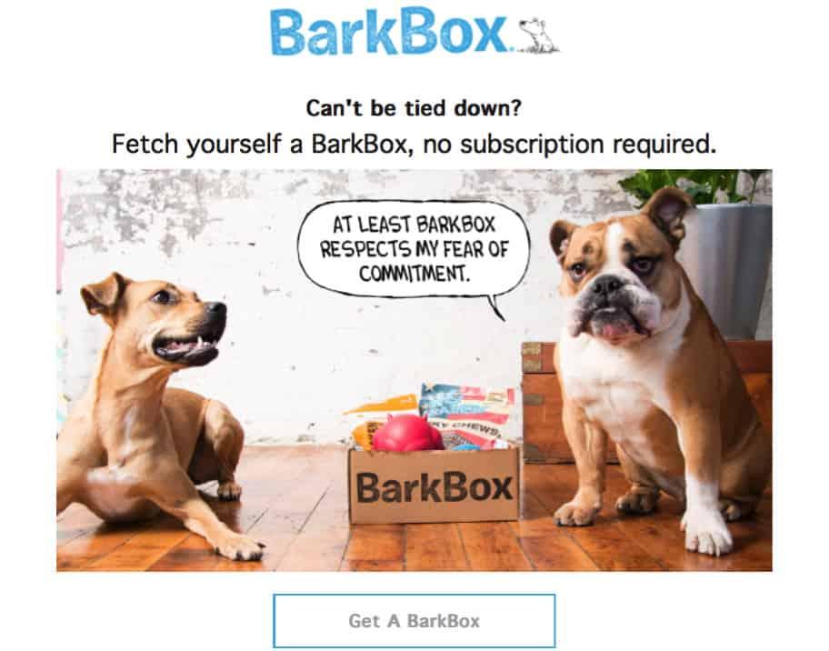 Exemplo de uma newsletter do BarkBox como estratégia de marketing de conteúdo