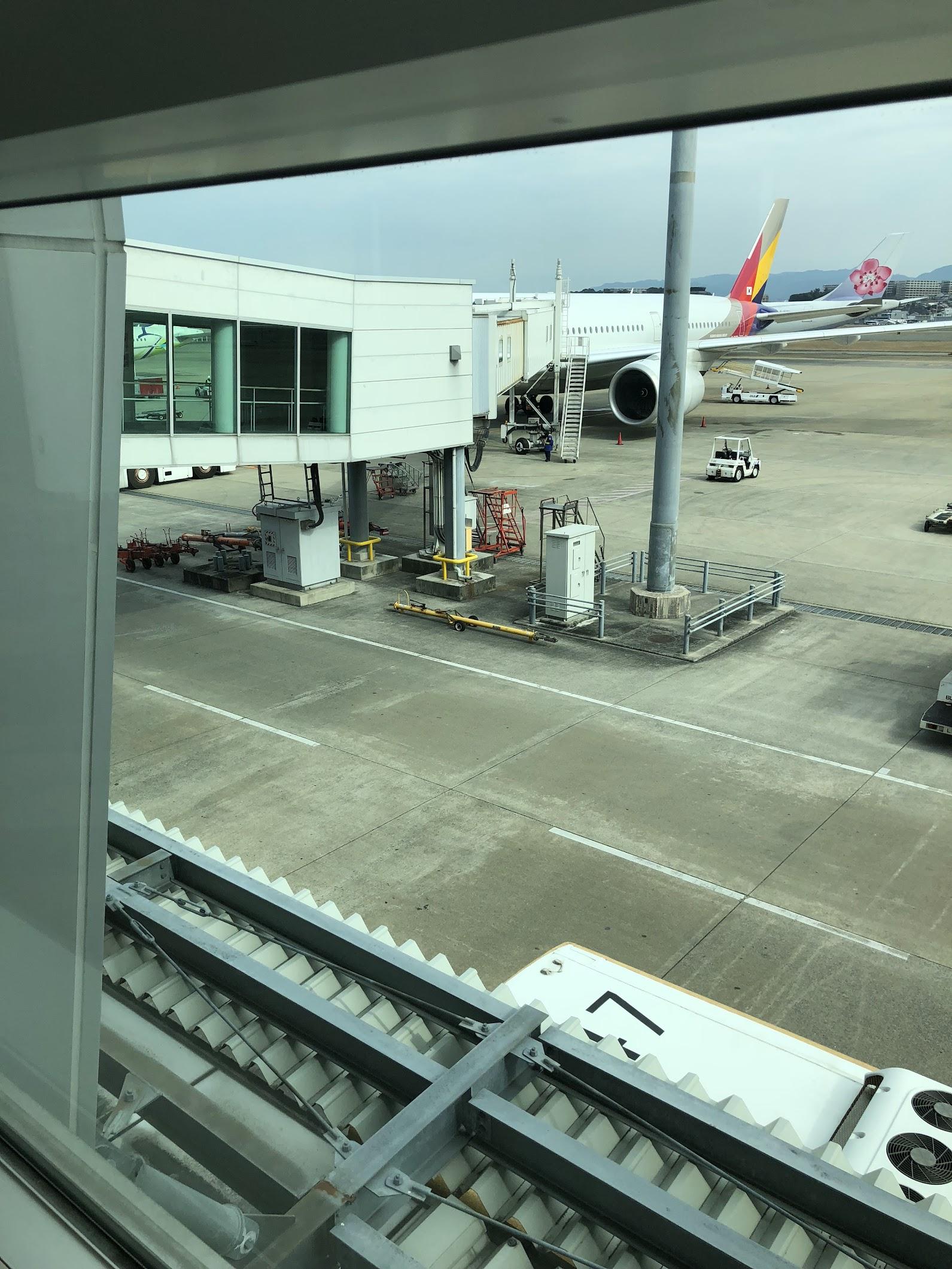 アシアナ航空で福岡→セブ島のフライト