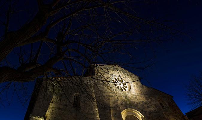 Col naso all'insù...di notte. di Andrea Di Florio
