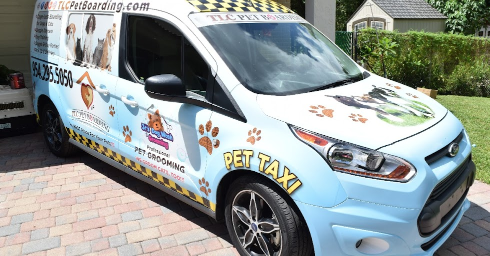 PET TAXI | TLC Pet Boarding