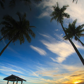 Worth to Wait by William Cheng - Landscapes Sunsets & Sunrises ( malaysia sunrise coconut sky cloud )