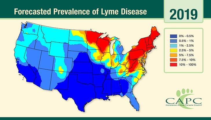 Map of the U.S. forecasts Lyme Disease population density in 2019