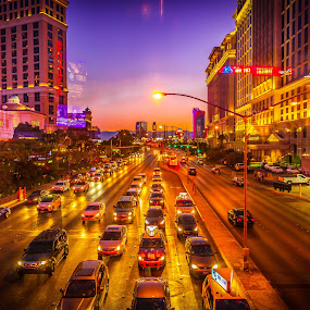 Las Vegas by Night by Matthew Clausen - City,  Street & Park  Street Scenes ( las vegas, purple, sunset, nevada, strip )