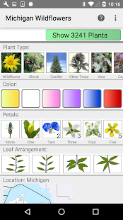 Michigan Wildflowers- screenshot thumbnail