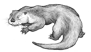 Photo: River otter sketch