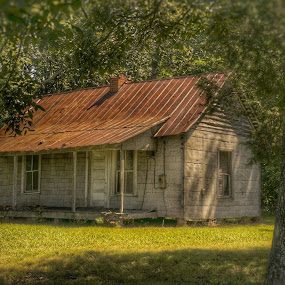 Pretty little cabin by Debra Graham - Buildings & Architecture Decaying & Abandoned