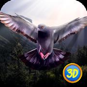 Wild Pigeon Simulator