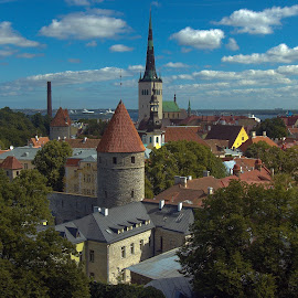 The Old City Of Tallinn by Garry Dosa - City,  Street & Park  Historic Districts ( estonia, city, old, tallin, cityscape, travel, rooftop, summer, architecture )