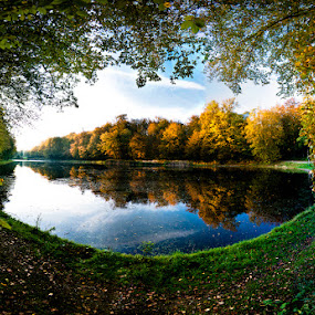 Autumn lake by Max Mayorov - Landscapes Waterscapes ( frame, tree, autumn, lake, belgium, forest )