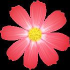 Registro del periodo ovulación icon