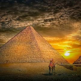 Towards Aten by Khaled Noaman - Buildings & Architecture Statues & Monuments ( camel, sunset, pyramid, sun, egytp,  )