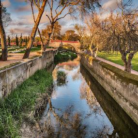 The little bridge by Ana Paula Filipe - City,  Street & Park  City Parks ( tree, oeiras, bridge, river, water )