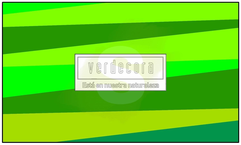 Diseños para jardines verticales de interior