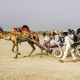by Mohsin Raza - Transportation Other (  )