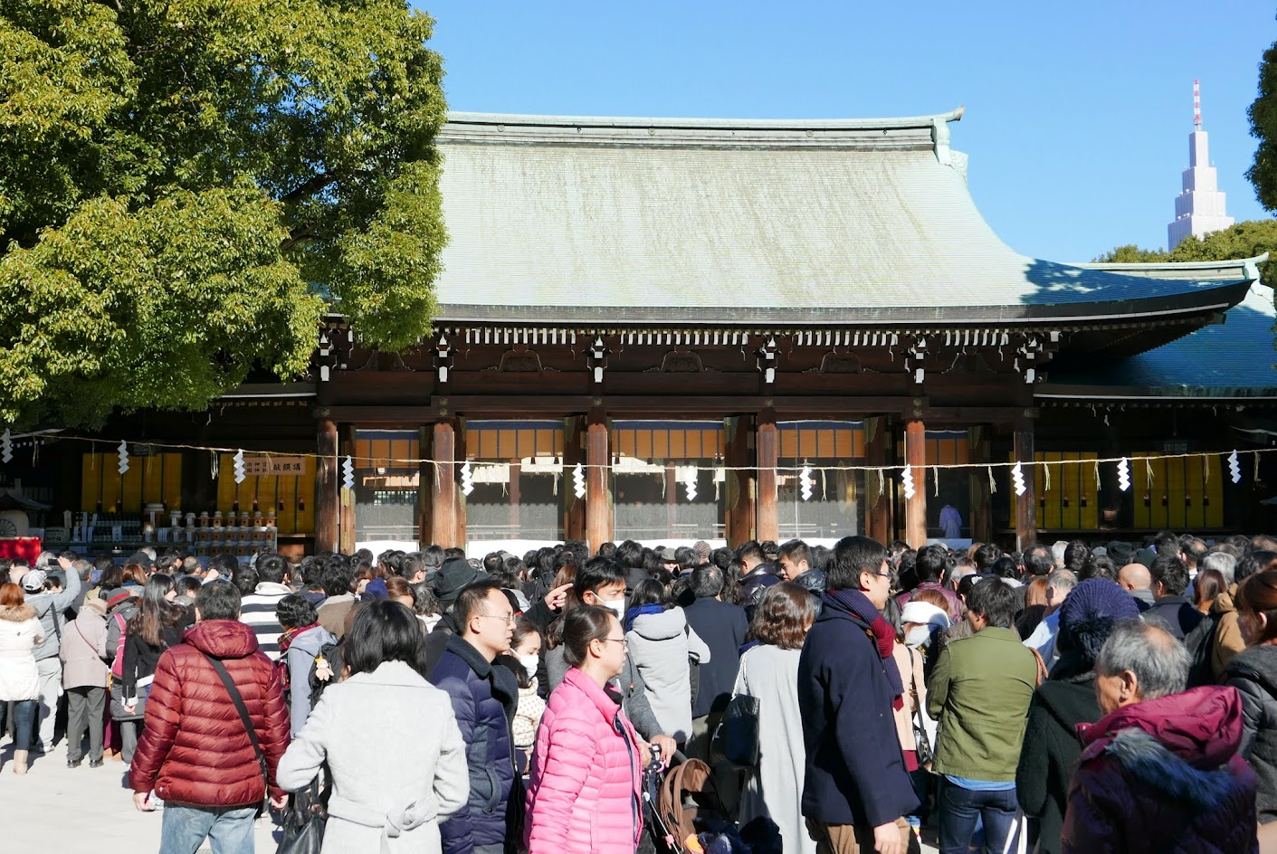 Hatsumode at Meiji Shrine on New Year's Day - there was some long money flinging forward from the crowds where you see people standing and facing the shrine, vs the people you see in front of me who are moving to the side gates where the ema boards and other purchases of Omamori