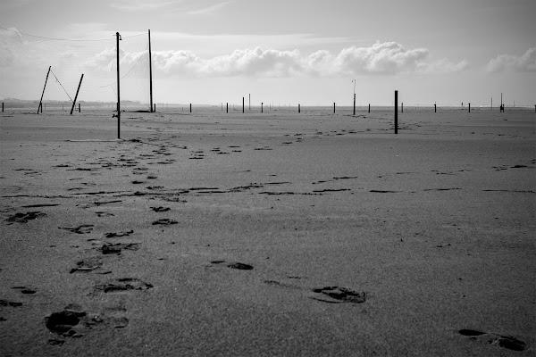 Spiaggia desolata