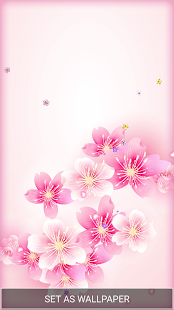 Cherry Blossom Live Wallpaper កម មវ ធ ន ល Google Play