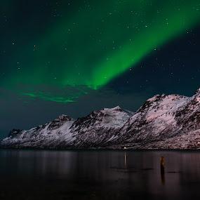 Northen Lights over Ersfjordbotn I by Pierre Husson - Landscapes Starscapes ( winter, aurora borealis, ersfjordbotn, nightscape, norway )