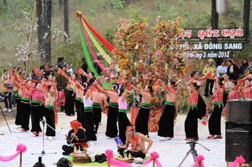 Rừng thông Bản Áng tổ chức lễ hội Hết Chá năm 2012