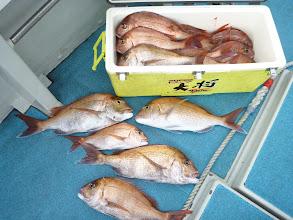 Photo: 釣果発表!トップ賞はタムラさん! お昼までの釣果で20匹!すごいですねー! サイズもバッチリでした。
