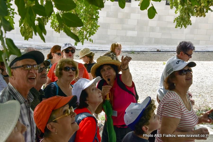 Гид в Израиле Светлана Фиалкова на экскурсии в монастырях Иудейских гор.
