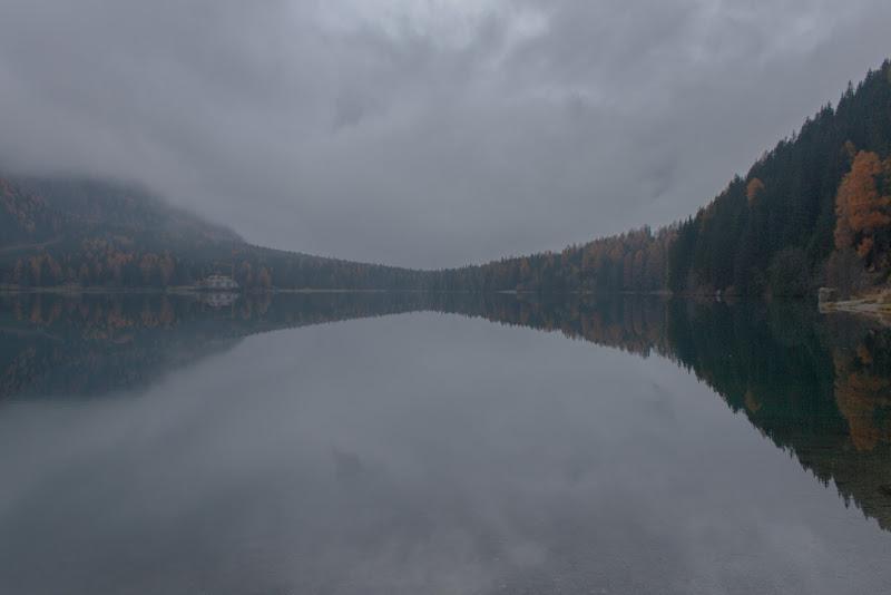 Nella nebbia di BlackPuffin