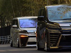 ヴェルファイア AGH30W 後期 Z-Gエディションのカスタム事例画像 あいうえ太田さんの2021年02月24日21:58の投稿