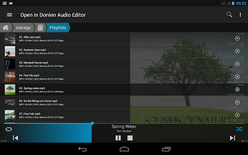 Doninn Audio Editor- screenshot thumbnail
