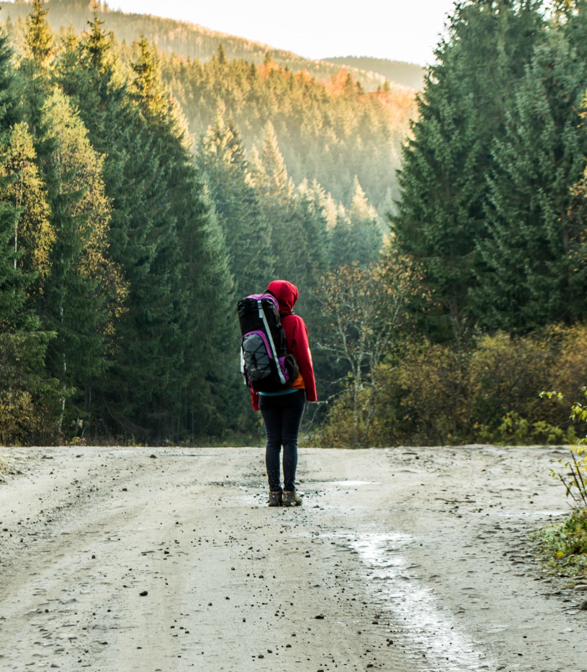 Дорога в Осмолоду