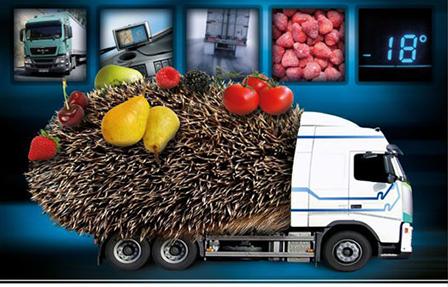 Услуги по рефрижераторным перевозкам грузов