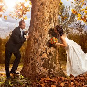 Sweet love by Bojan Dzodan - Wedding Bride & Groom ( love, sweet, nature, wedding, bride )