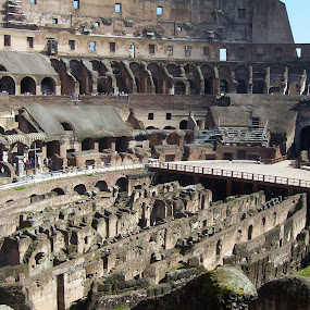 Inside Rome Colosseum by Valerie Aebischer - Buildings & Architecture Public & Historical ( flavian amphitheatre, landmark, colosseum, italian, rome italy, rome, rome colosseum, travel, italy )