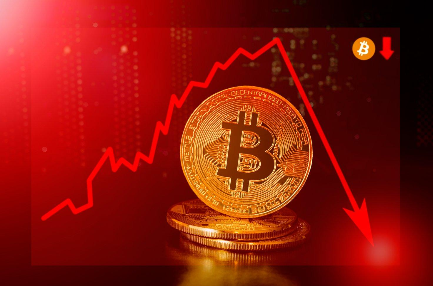 Will Bitcoin Crash Continue or it Would Make Another High in the Coming  Weeks ,Also Know the Reason Behind the Fall - EveDonusFilm
