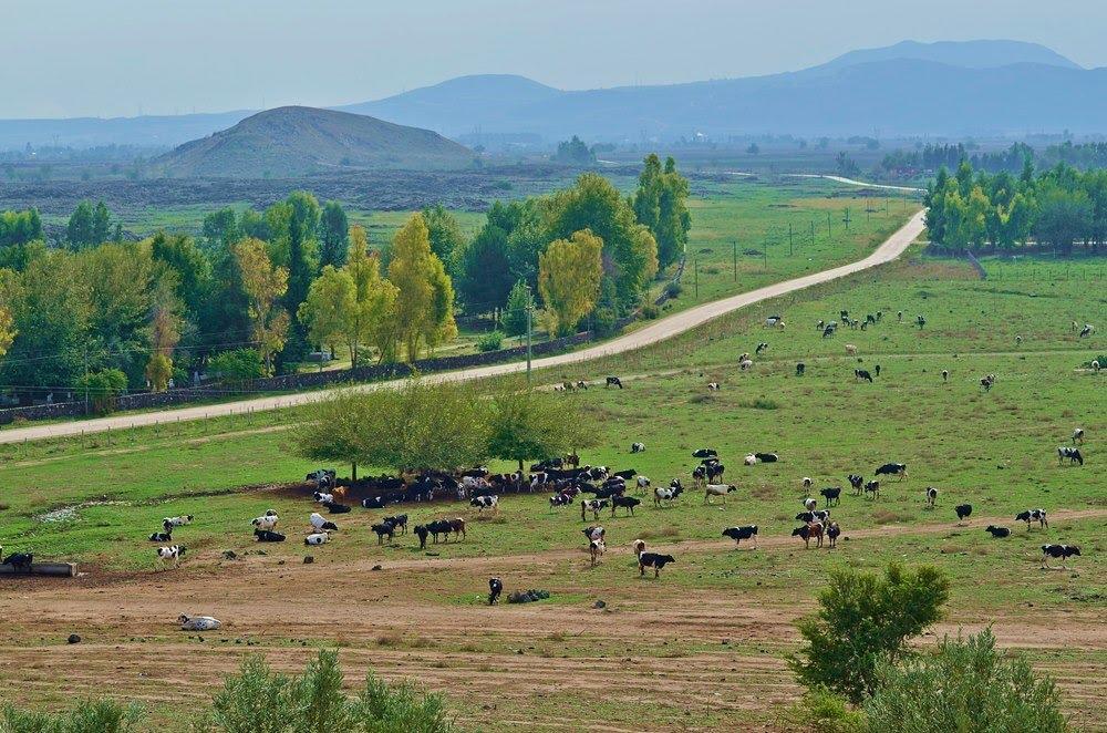 C:\Users\alialpercetin\Desktop\CERİDLER\Yiğit Bir Türkmen Aşireti CERİDLER (Yayın)\CERİT FOTO- LOGO\Cerid_5 Tatarlı Köyü.jpg