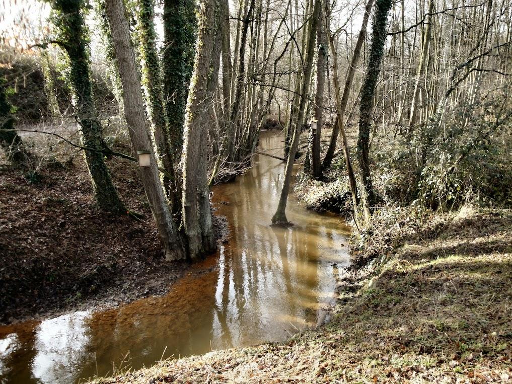 Schellekensbeek nabij Ronckenstein