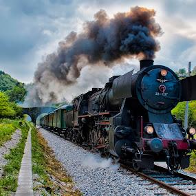 TRAIN by Stane Gortnar - Transportation Trains