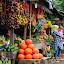 fruits by Muzakhir Rida - City,  Street & Park  Markets & Shops ( markets, fruits, street, lembang, west java )