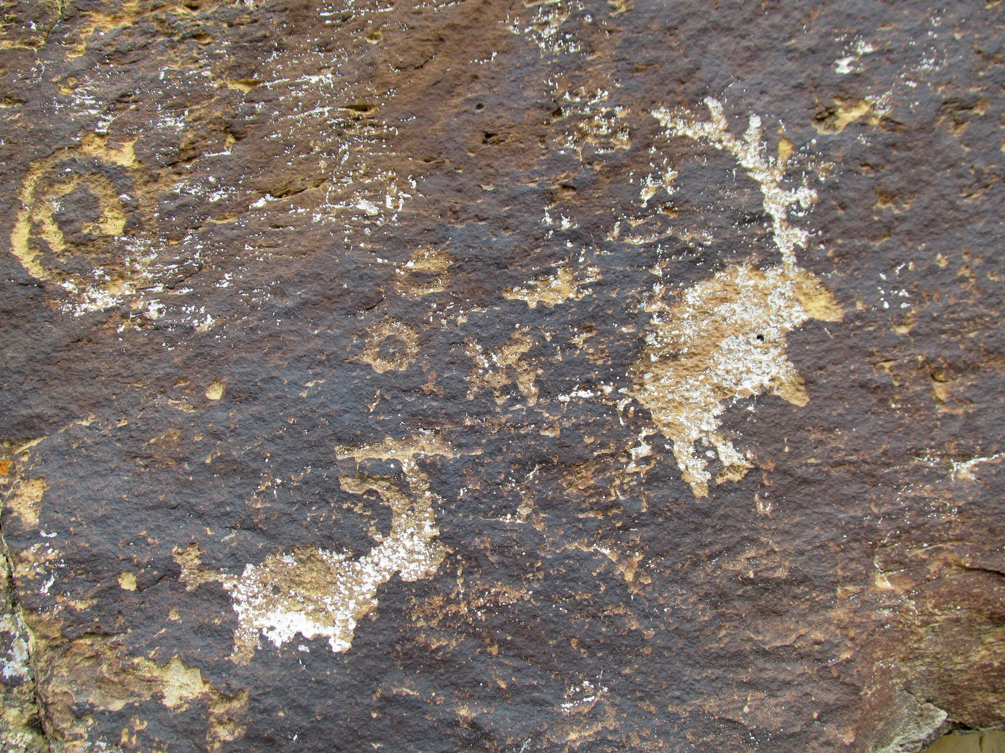Photo: Small but interesting petroglyphs