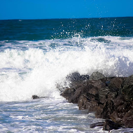 Imperial Beach by Alesia Deaner-Marrs - Nature Up Close Water