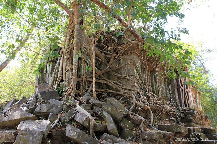 Камбоджа, дальние храмы Ангкора