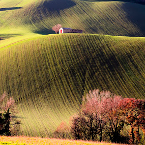 Red door over the hills by Mauro Fini - Landscapes Prairies, Meadows & Fields ( red door, green hills, house, marche )